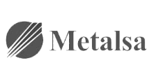 Logo - Metalsa